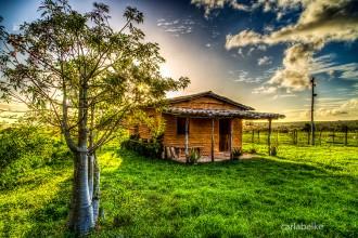 Casa Taipa_carlabelke