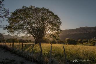 Vale_do_Catimbau_Buique_PE (20)