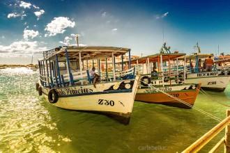 barcos_galos_carlabelke