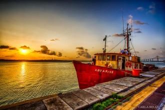 porto de natal compoente_carlabelke