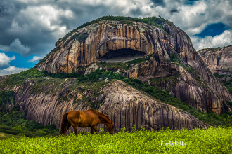 1 cavalo e a pedradaboca_carlabelke